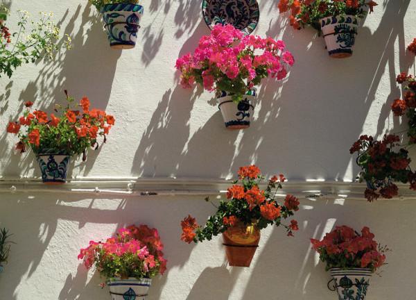 Cordoba Flowers Street
